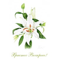 Russian Easter Cards - pack of 3